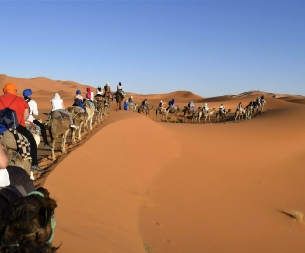 Tours from Agadir